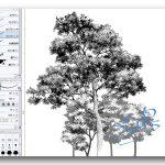 【漫画の描き方 背景】木の描き方のコツをつかもう!